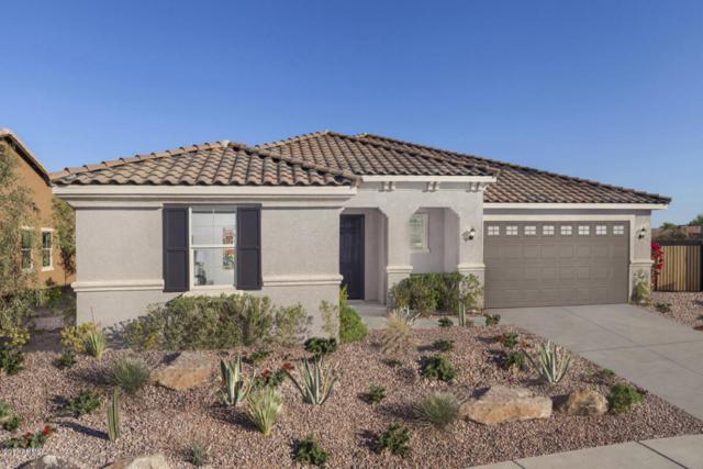 40570 W Hopper Drive, Maricopa, AZ 85138 (MLS #5689559) :: The Everest Team at My Home Group