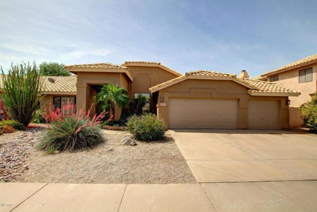 3523 W Barcelona Drive, Chandler, AZ 85226 (MLS #5689568) :: Sibbach Team - Realty One Group