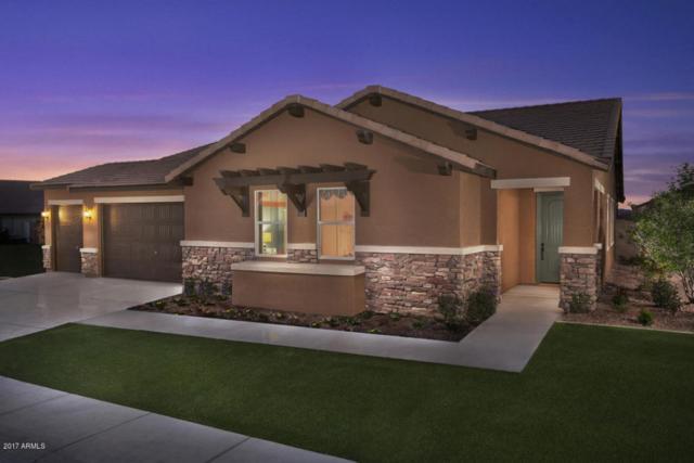 40592 W Hopper Drive, Maricopa, AZ 85138 (MLS #5689569) :: The Pete Dijkstra Team