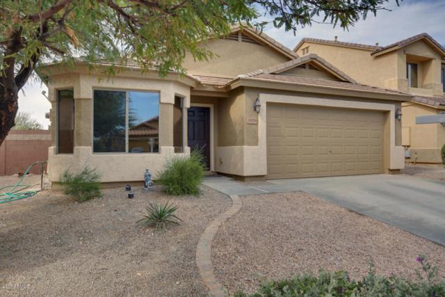 3978 N 294TH Lane, Buckeye, AZ 85396 (MLS #5689571) :: Desert Home Premier