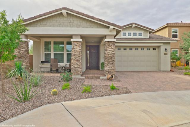 13203 W Copper Leaf Lane, Peoria, AZ 85383 (MLS #5689574) :: Kortright Group - West USA Realty