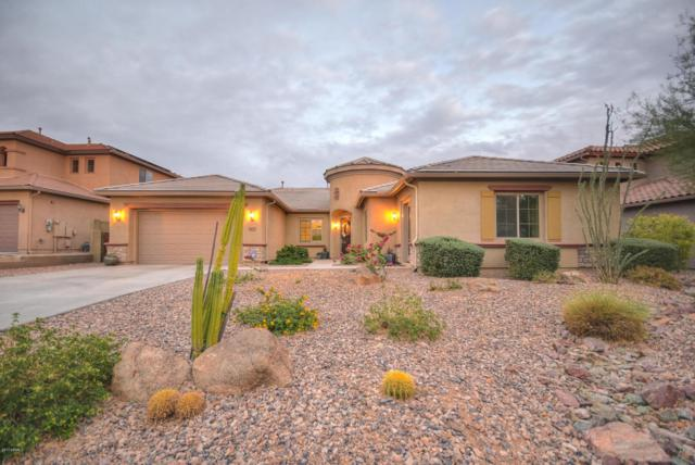 44013 N 50TH Avenue, Anthem, AZ 85087 (MLS #5689575) :: Desert Home Premier