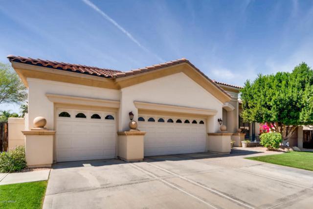 337 W Louis Way, Tempe, AZ 85284 (MLS #5689591) :: Lux Home Group at  Keller Williams Realty Phoenix
