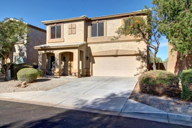 29108 N Cactus Circle, San Tan Valley, AZ 85143 (MLS #5689593) :: The Pete Dijkstra Team