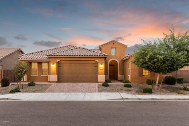694 W Mulberry Drive, Chandler, AZ 85286 (MLS #5689597) :: Santizo Realty Group