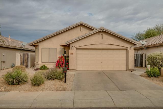 3356 E Blackhawk Drive, Phoenix, AZ 85050 (MLS #5689655) :: Sibbach Team - Realty One Group