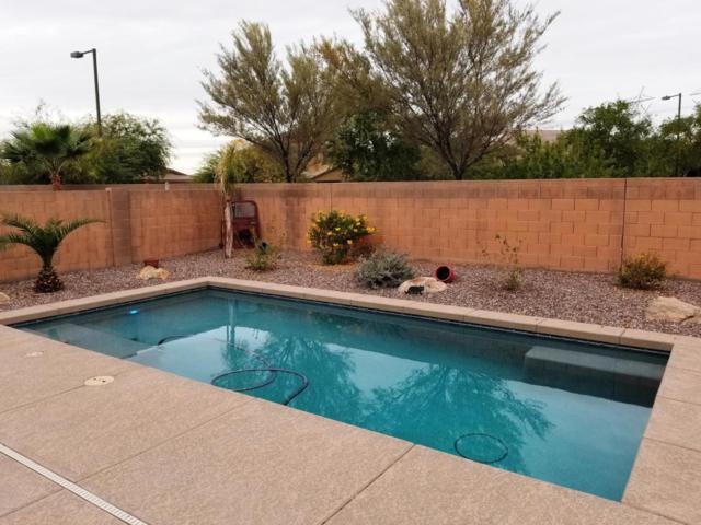 29868 W Clarendon Avenue, Buckeye, AZ 85396 (MLS #5689692) :: The AZ Performance Realty Team