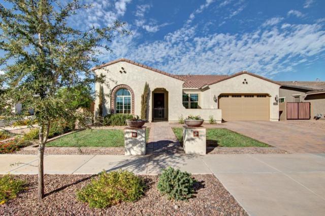 22042 E Estrella Road, Queen Creek, AZ 85142 (MLS #5689701) :: Santizo Realty Group