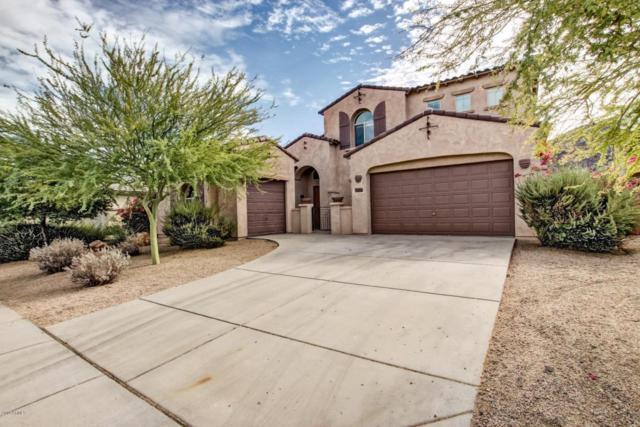 8359 W Remuda Drive, Peoria, AZ 85383 (MLS #5689712) :: Santizo Realty Group