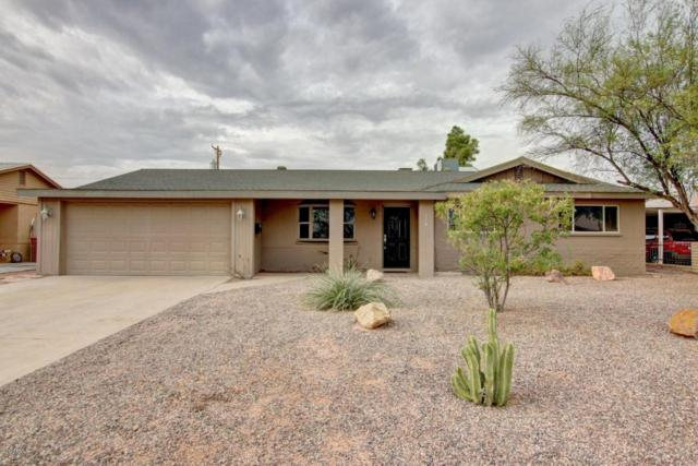 608 N 73RD Place, Scottsdale, AZ 85257 (MLS #5689736) :: Santizo Realty Group