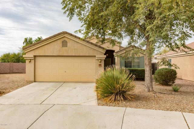 3544 S 160TH Lane, Goodyear, AZ 85338 (MLS #5689738) :: Santizo Realty Group