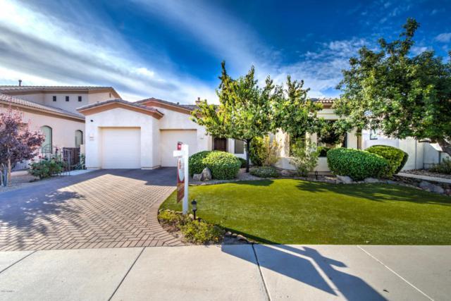 3034 N 50TH Street, Phoenix, AZ 85018 (MLS #5689743) :: Santizo Realty Group