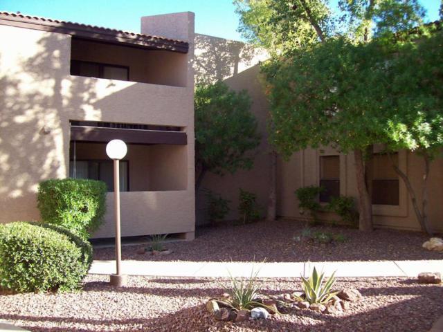 5146 E Oak Street #108, Phoenix, AZ 85008 (MLS #5689754) :: Santizo Realty Group