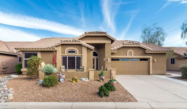 7566 E Rugged Ironwood Road, Gold Canyon, AZ 85118 (MLS #5689755) :: The Pete Dijkstra Team