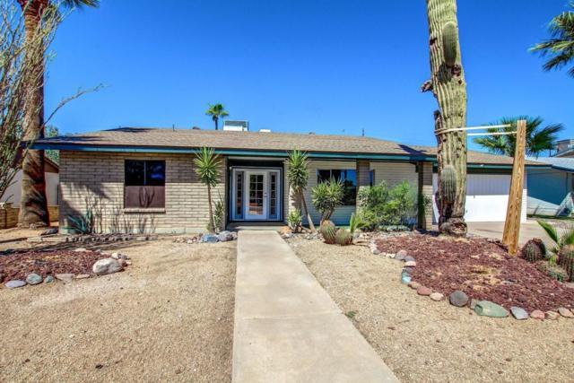 14016 N 42ND Drive, Phoenix, AZ 85053 (MLS #5689783) :: Santizo Realty Group