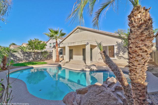 14145 W Evans Drive, Surprise, AZ 85379 (MLS #5689801) :: Desert Home Premier