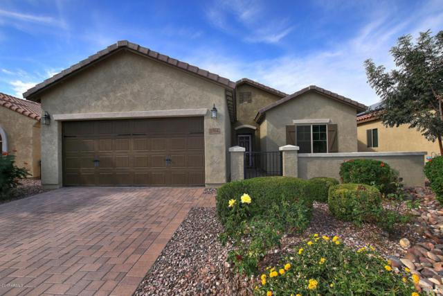 3364 N Huntington Drive, Florence, AZ 85132 (MLS #5689810) :: Santizo Realty Group
