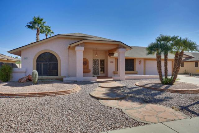 17619 N 134TH Avenue, Sun City West, AZ 85375 (MLS #5689822) :: Desert Home Premier