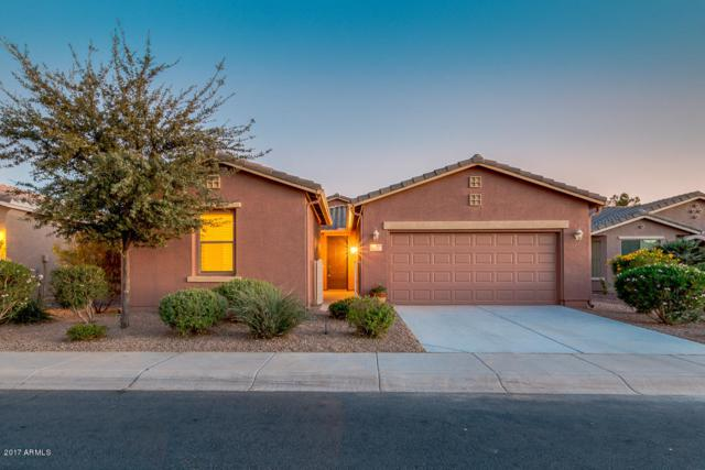 42727 W Darter Drive, Maricopa, AZ 85138 (MLS #5689874) :: The Pete Dijkstra Team