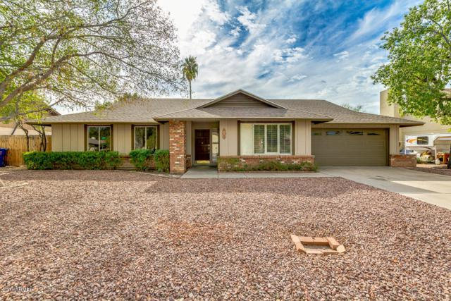 1123 E Halifax Street, Mesa, AZ 85203 (MLS #5689911) :: Lifestyle Partners Team