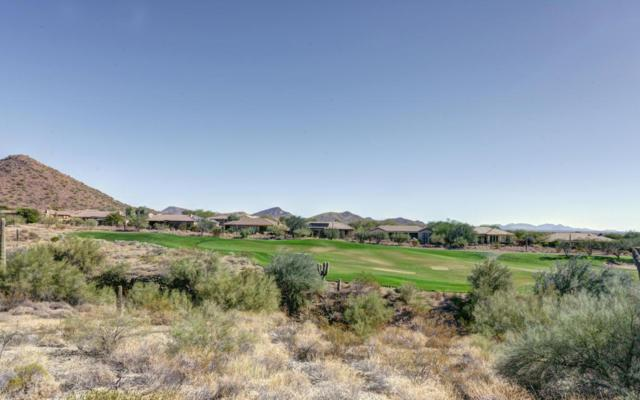 41967 N Back Creek Court, Anthem, AZ 85086 (MLS #5689918) :: Desert Home Premier