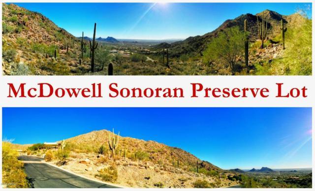 13417 N 137th Street, Scottsdale, AZ 85259 (MLS #5689923) :: Lifestyle Partners Team