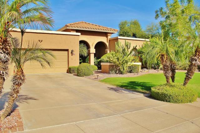 9628 E Windrose Drive, Scottsdale, AZ 85260 (MLS #5689932) :: The Pete Dijkstra Team