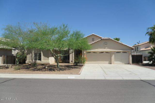 7664 W Tumblewood Drive, Peoria, AZ 85382 (MLS #5689973) :: The AZ Performance Realty Team
