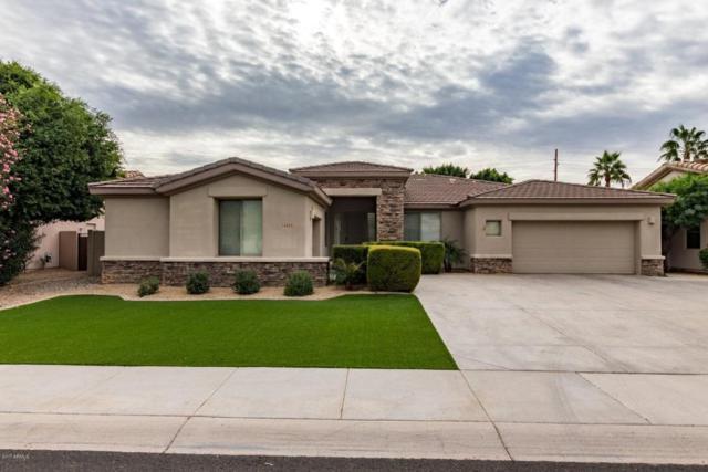 14453 W Verde Lane, Goodyear, AZ 85395 (MLS #5690022) :: The AZ Performance Realty Team