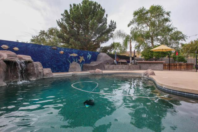 4124 N Dania Court, Litchfield Park, AZ 85340 (MLS #5690154) :: Kelly Cook Real Estate Group