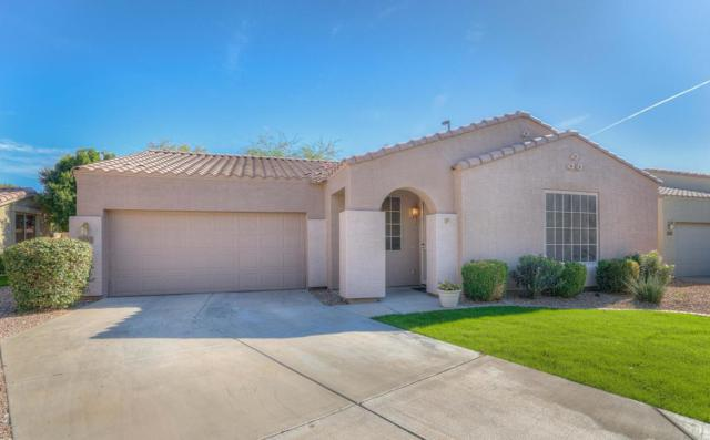 2053 S Essex Avenue, Mesa, AZ 85209 (MLS #5690157) :: Kelly Cook Real Estate Group