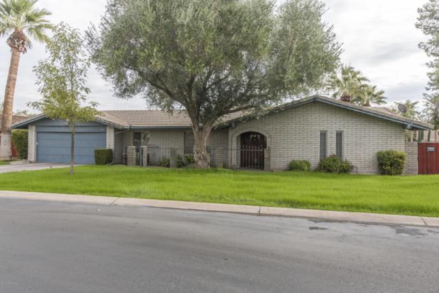 1115 Torreon Drive E, Litchfield Park, AZ 85340 (MLS #5690179) :: Devor Real Estate Associates