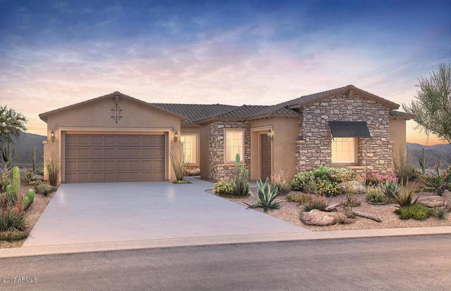 9426 W Weeping Willow Road, Peoria, AZ 85383 (MLS #5690267) :: The AZ Performance Realty Team