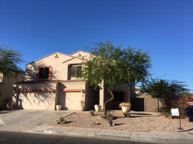 23312 W Hopi Street, Buckeye, AZ 85326 (MLS #5690333) :: The AZ Performance Realty Team