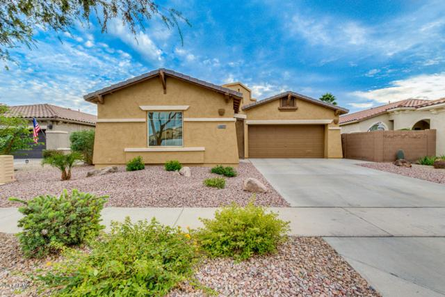 683 E Las Colinas Place, Chandler, AZ 85249 (MLS #5690353) :: Kelly Cook Real Estate Group