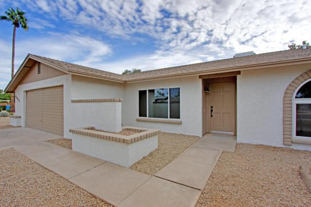 4901 E Corrine Drive, Scottsdale, AZ 85254 (MLS #5690418) :: Kelly Cook Real Estate Group