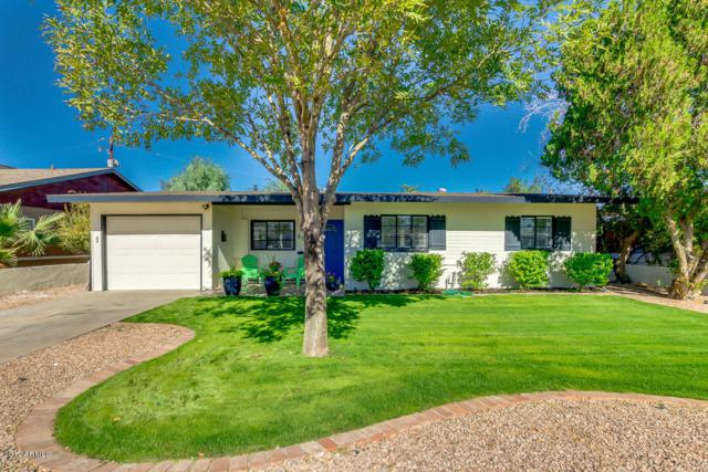 812 W Piccadilly Road, Phoenix, AZ 85013 (MLS #5690460) :: Kelly Cook Real Estate Group