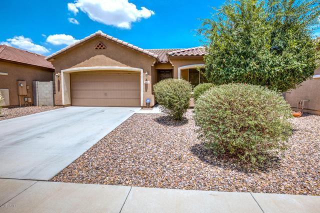 3031 S Sailors Way, Gilbert, AZ 85295 (MLS #5690464) :: Lux Home Group at  Keller Williams Realty Phoenix