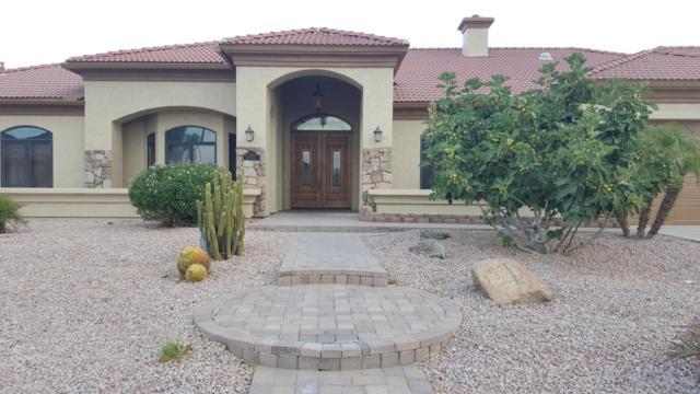 12720 W Denton Avenue, Litchfield Park, AZ 85340 (MLS #5690510) :: Devor Real Estate Associates