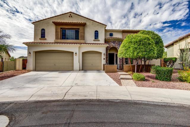2405 E Charlotte Drive, Phoenix, AZ 85024 (MLS #5690511) :: Lux Home Group at  Keller Williams Realty Phoenix
