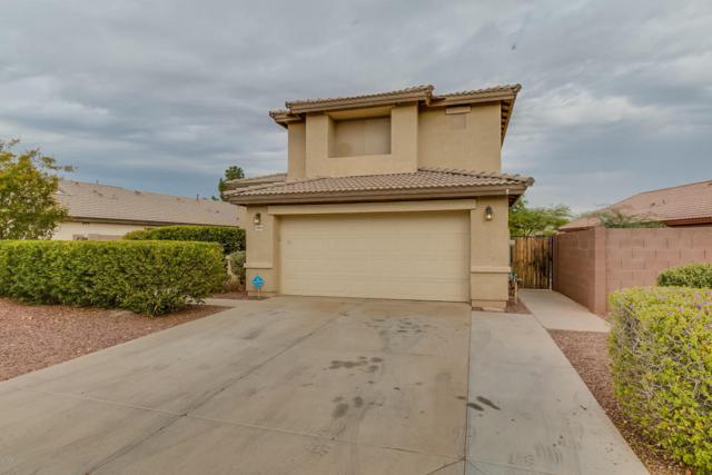 10954 W Elm Lane, Avondale, AZ 85323 (MLS #5690517) :: Devor Real Estate Associates