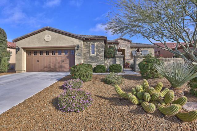13038 W Pinnacle Vista Drive, Peoria, AZ 85383 (MLS #5690536) :: The Laughton Team