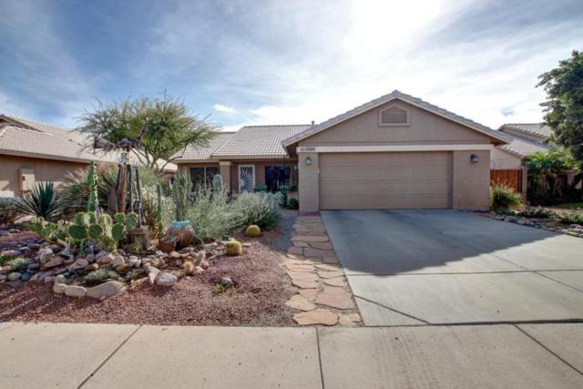 10869 W Alex Avenue, Sun City, AZ 85373 (MLS #5690554) :: Lux Home Group at  Keller Williams Realty Phoenix