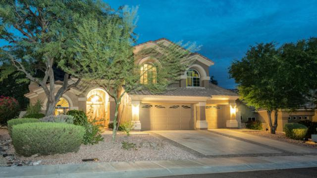 1425 E Desert Broom Way, Phoenix, AZ 85048 (MLS #5690580) :: Lux Home Group at  Keller Williams Realty Phoenix