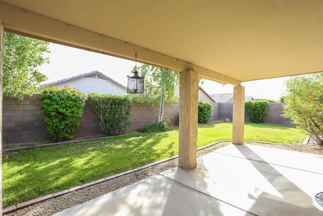 8919 W Kings Avenue W, Peoria, AZ 85382 (MLS #5690662) :: The Laughton Team