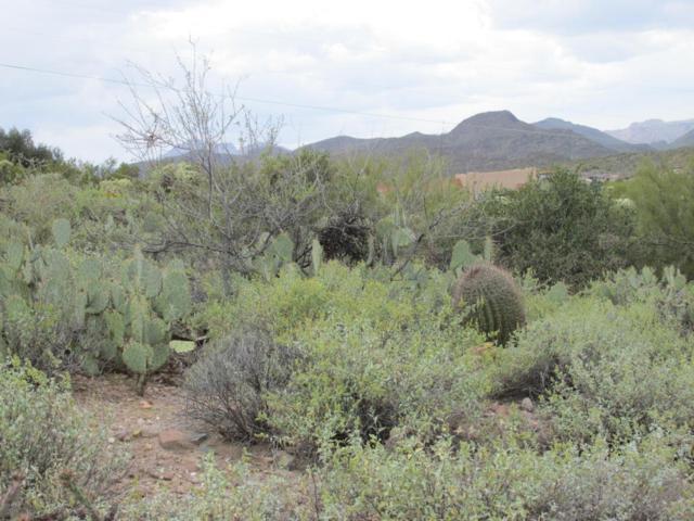 138 N Cavendish Street, Queen Valley, AZ 85118 (MLS #5690725) :: The Daniel Montez Real Estate Group