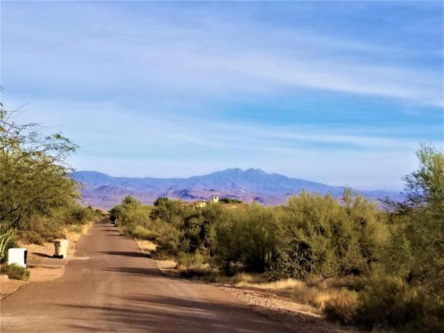14223 E Gamble Lane, Scottsdale, AZ 85262 (MLS #5690764) :: Revelation Real Estate