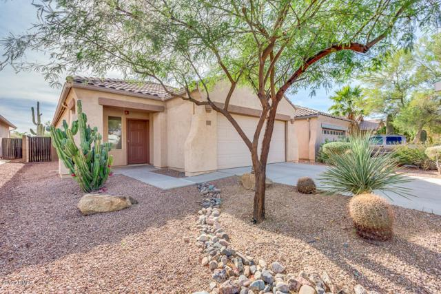 10323 E Second Water Trail, Gold Canyon, AZ 85118 (MLS #5690785) :: Revelation Real Estate