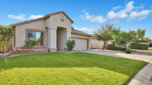 113 E Canary Court, San Tan Valley, AZ 85143 (MLS #5690808) :: The Everest Team at My Home Group