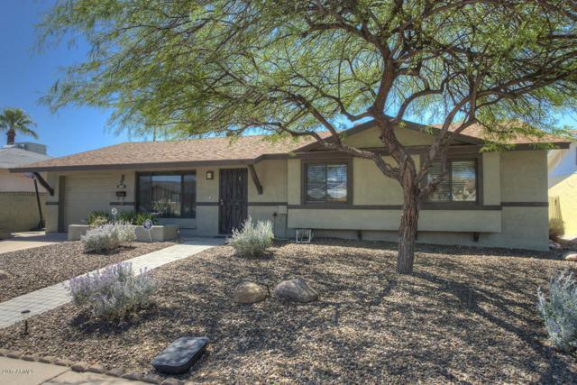 7807 E Cypress Street, Scottsdale, AZ 85257 (MLS #5690846) :: Revelation Real Estate
